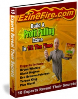 Build A Profit Pulling Ezine In 1/2 The Time