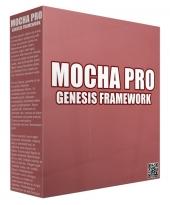 Mocha Pro Genesis Framework WordPress Theme Private Label Rights