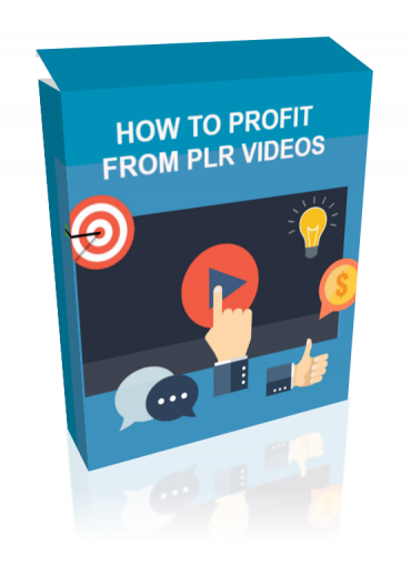 How To Profit From PLR Videos