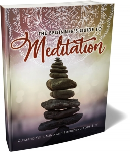 The Beginner's Guide To Meditation - Private Label Rights