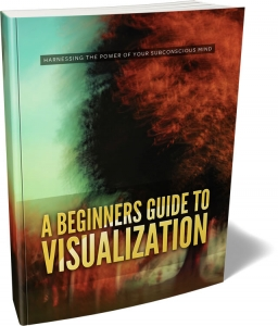 A Beginners Guide To Visualization - Private Label Rights