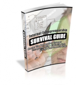 Internet Entrepreneurship Survival Guide