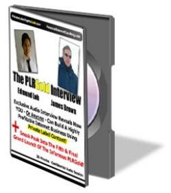The PLR Gold Interview