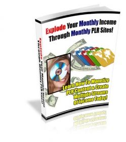Explode Your Monthly Income Through Monthly PLR Sites!