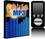 Web 2.0 Traffic MP3 Private Label Rights