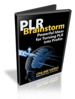 PLR Brainstorm Private Label Rights