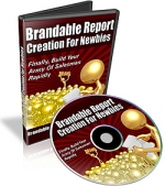 Brandable Report Creation For Newbies Private Label Rights