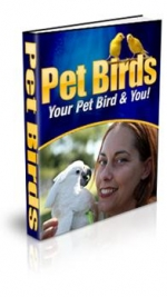 Pet Birds Private Label Rights
