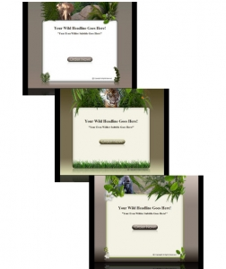 Wildlife Template & WP Themes