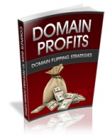 Domain Profits Private Label Rights