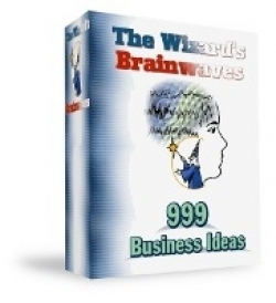 The Wizards Brainwaves : 999 Business Ideas