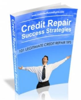 Credit Repair Success Strategies