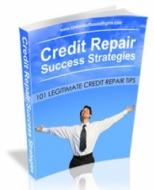Credit Repair Success Strategies Private Label Rights