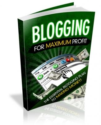 Blogging For Maximum Profit