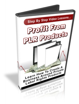 Profit From PLR Products