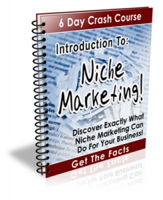 Introduction To: Niche Marketing!