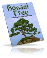 Bonsai Tree Private Label Rights