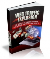 Web Traffic Explosion Private Label Rights