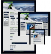 Skiing - WP Theme Private Label Rights