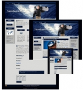 Snowboarding - WP Theme Private Label Rights