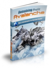 Domaining Profits Avalanche Private Label Rights