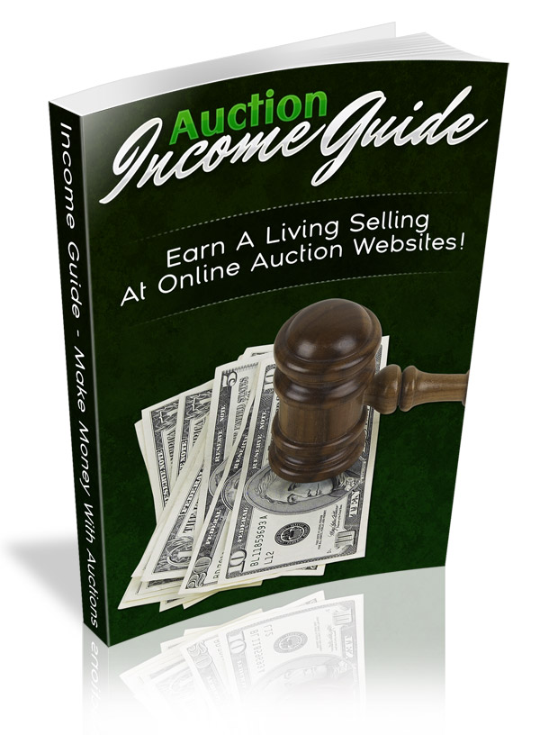 Auction Income Guide