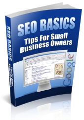 SEO Basics - Tips For Small Business Owners Private Label Rights