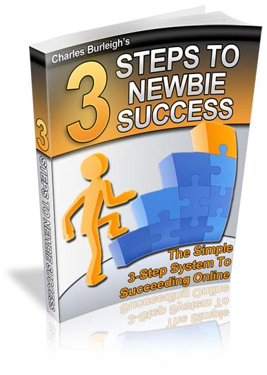 3 Steps To Newbies Success