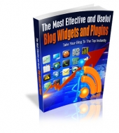 The Most Effective And Useful Blog Widgets And Plugins Private Label Rights