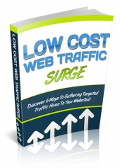 Low Cost Web Traffic Surge Private Label Rights