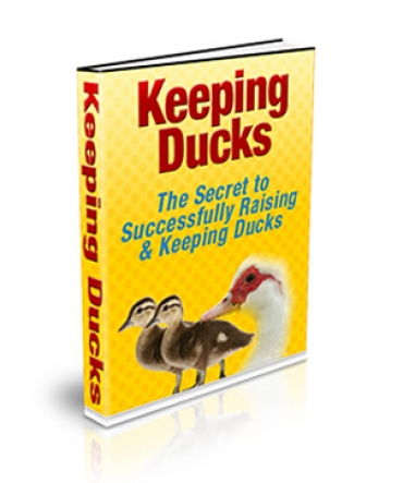 Keeping Ducks