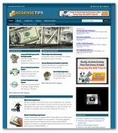 Adsense Niche Blog Private Label Rights