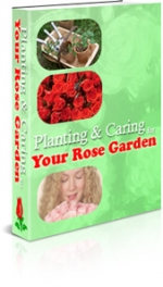 Planning & Caring Your Rose Garden Private Label Rights