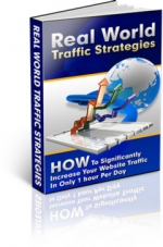 Real World Traffic Strategies Private Label Rights