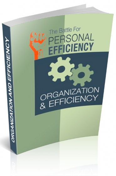 Organization And Efficiency V2