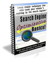 Search Engine Optimization Basics Private Label Rights