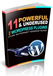 11 Powerful Wordpress Plugins For Internet Marketers Private Label Rights