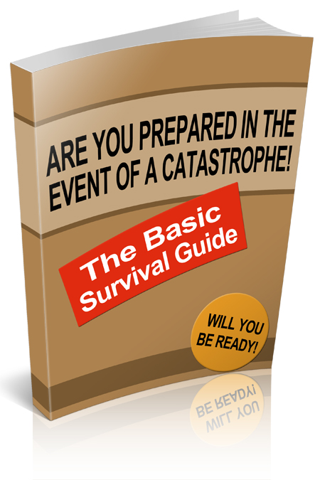 The Basic Survival Guide