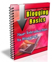 Blogging Basics 2013 Private Label Rights