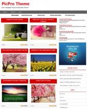 Picpro Wordpress Theme Private Label Rights