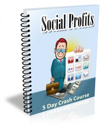 Social Profits 2013