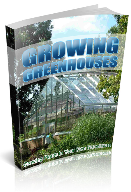 Growing Plants In Your Own Greenhouse
