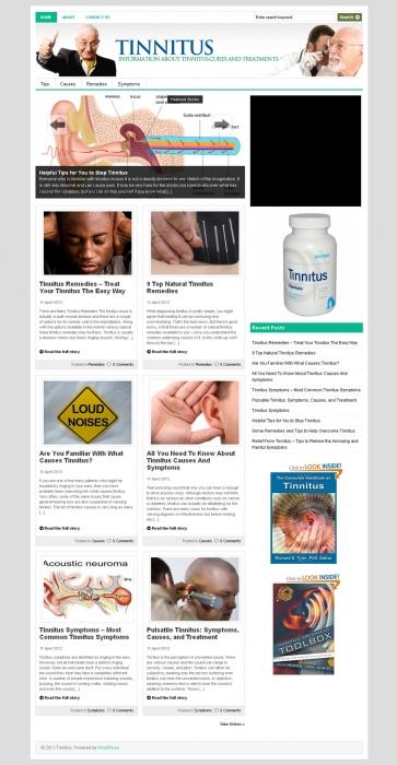 Tinnitus Niche Blog