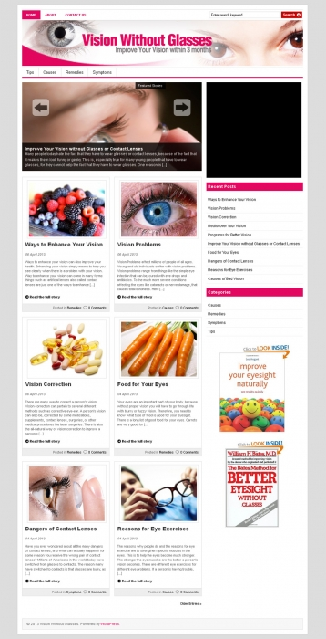 Vision Without Glasses PLR Niche Blog