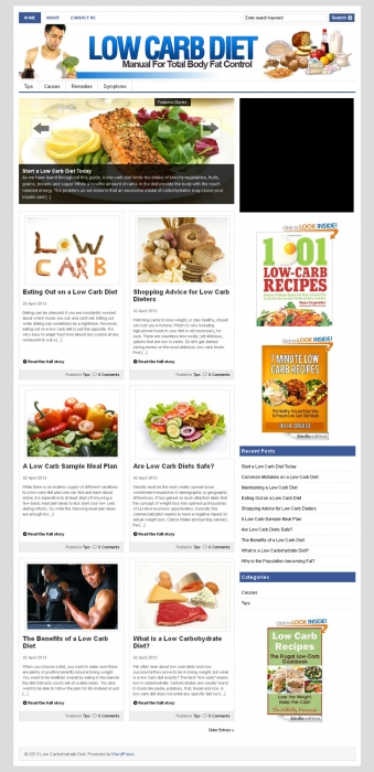 Low Carb Diet PLR Niche Blog