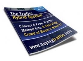 The Traffic Hybrid System