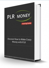 PLR Money Made Easy Private Label Rights