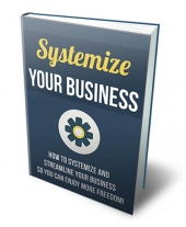 Systemize Your Business Private Label Rights