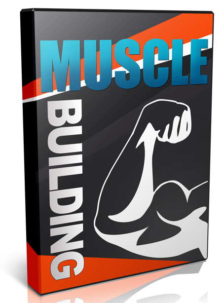Muscle Building Video Series