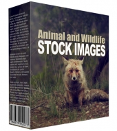 Animal and Wildlife Stock Images Private Label Rights